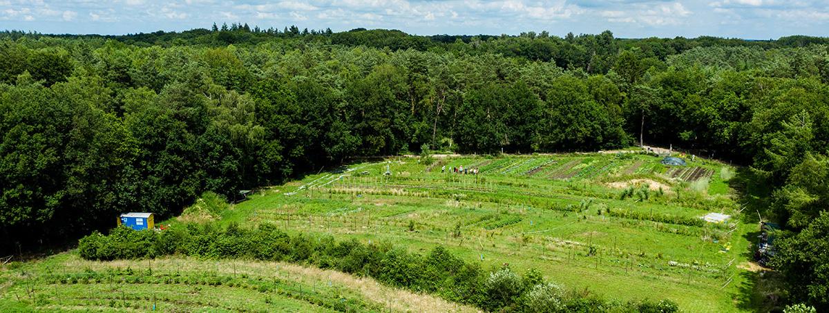 PMagazine Regeneratieve landbouw